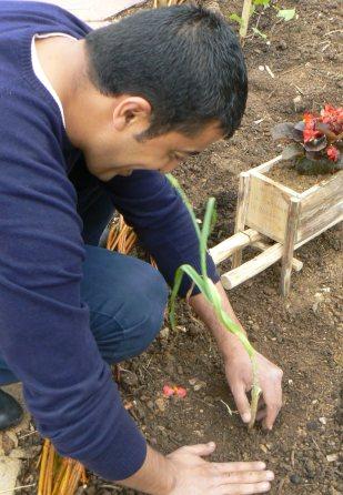 Un jardinier dans sa parcelle
